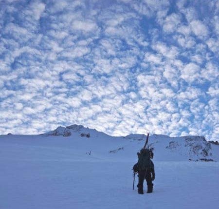 Mt Shasta West Face Skier